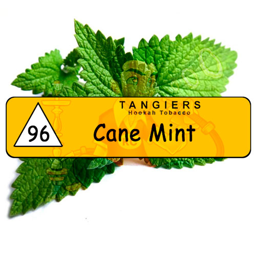 Cane Mint tangiers