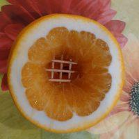 Кальян на апельсине