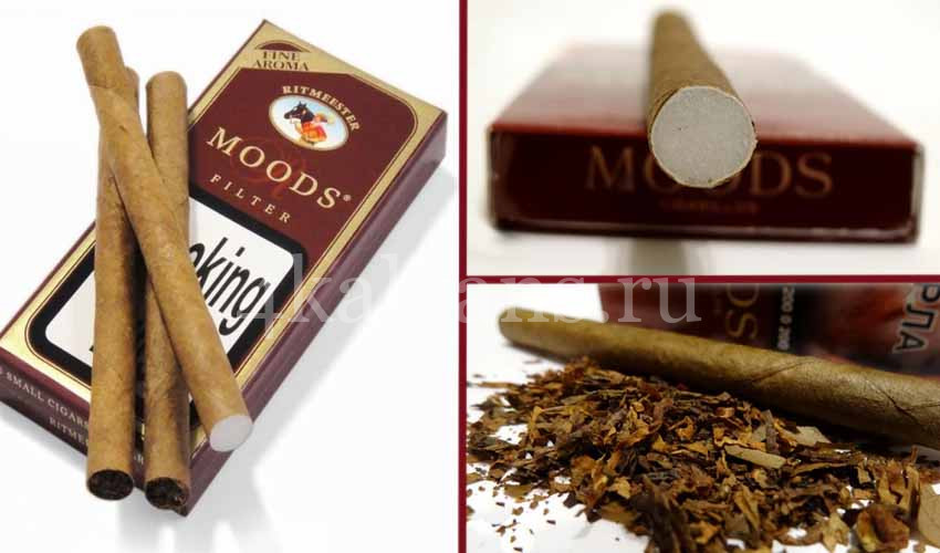 где купить сигариллы moods