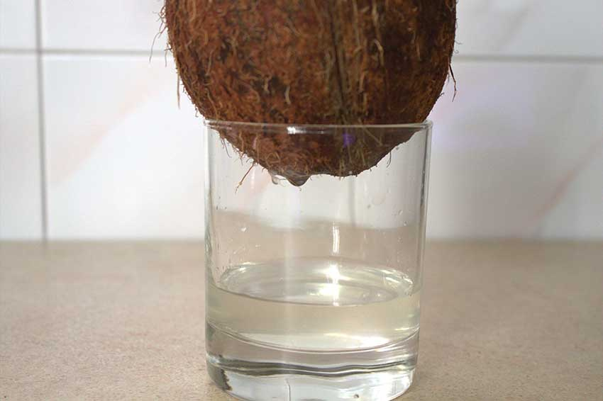 Кальян на кокосе